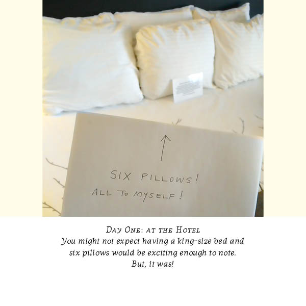 "Photo showing hand-held sign pointing to hotel bed with six plush pillows; the sign says ""Six pillows! All to myself!"""