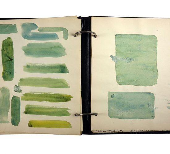 Binder with rectangles of green watery paint swatches; made in 1921/1922 by Charlotte Cummings while at the University of Wisconsin-Madison.